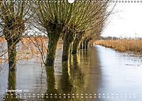 Astrein! - Der Baumkalender 2019 (Wandkalender 2019 DIN A3 quer) - Produktdetailbild 9