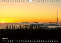 Astrein! - Der Baumkalender 2019 (Wandkalender 2019 DIN A4 quer) - Produktdetailbild 5
