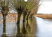 Astrein! - Der Baumkalender 2019 (Wandkalender 2019 DIN A4 quer) - Produktdetailbild 9