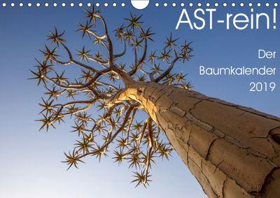 Astrein! - Der Baumkalender 2019 (Wandkalender 2019 DIN A4 quer), Irma van der Wiel