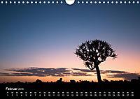 Astrein! - Der Baumkalender 2019 (Wandkalender 2019 DIN A4 quer) - Produktdetailbild 2