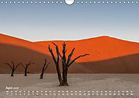 Astrein! - Der Baumkalender 2019 (Wandkalender 2019 DIN A4 quer) - Produktdetailbild 4