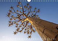 Astrein! - Der Baumkalender 2019 (Wandkalender 2019 DIN A4 quer) - Produktdetailbild 6