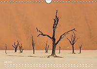 Astrein! - Der Baumkalender 2019 (Wandkalender 2019 DIN A4 quer) - Produktdetailbild 7