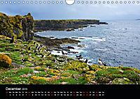 ATLANTIC PUFFINS OF SCOTLAND (Wall Calendar 2019 DIN A4 Landscape) - Produktdetailbild 12