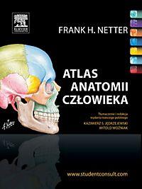 ANATOMIA HUMANA ATLAS DE FRANK PDF NETTER