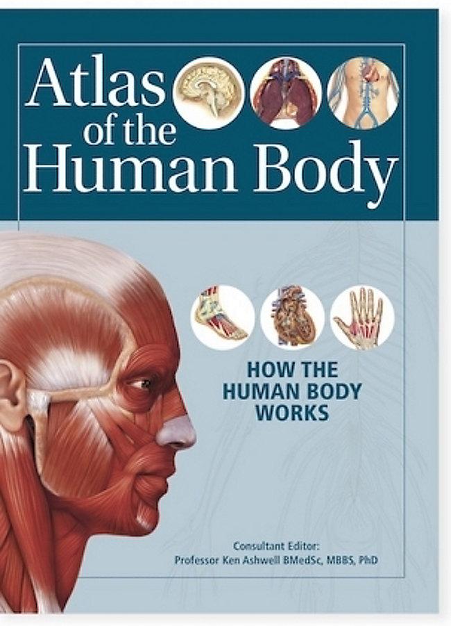 Atlas Of The Human Body Buch Von Ken Ashwell Portofrei Bestellen