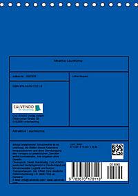 Attraktive Leuchttürme (Tischkalender 2019 DIN A5 hoch) - Produktdetailbild 13