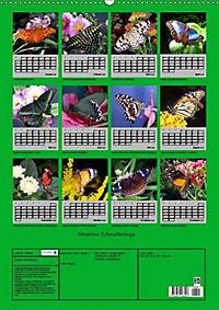 Attraktive, Schmetterlinge (Wandkalender 2019 DIN A2 hoch) - Produktdetailbild 13
