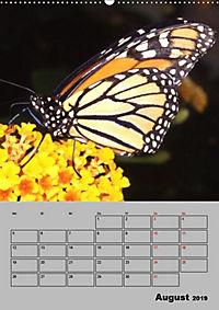 Attraktive, Schmetterlinge (Wandkalender 2019 DIN A2 hoch) - Produktdetailbild 8