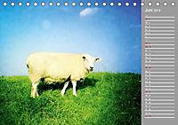 AUF DEM DEICH (Tischkalender 2019 DIN A5 quer) - Produktdetailbild 6