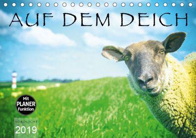 AUF DEM DEICH (Tischkalender 2019 DIN A5 quer), Nordlicht