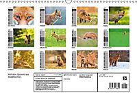 Auf den Spuren der Stadtfüchse (Wandkalender 2019 DIN A3 quer) - Produktdetailbild 13