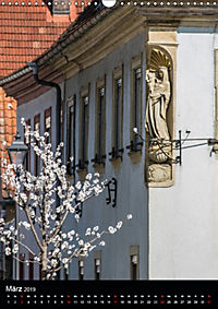 Auf der Weininsel Sommerach und Nordheim (Wandkalender 2019 DIN A3 hoch) - Produktdetailbild 3