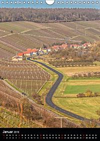 Auf der Weininsel Sommerach und Nordheim (Wandkalender 2019 DIN A4 hoch) - Produktdetailbild 1