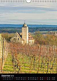 Auf der Weininsel Sommerach und Nordheim (Wandkalender 2019 DIN A4 hoch) - Produktdetailbild 12