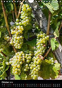 Auf der Weininsel Sommerach und Nordheim (Wandkalender 2019 DIN A4 hoch) - Produktdetailbild 10