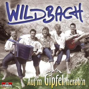 Auf 'm Gipfel herob'n, Wildbach