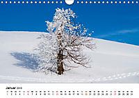Auf neuen Wegen (Wandkalender 2019 DIN A4 quer) - Produktdetailbild 1