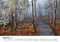 Auf neuen Wegen (Wandkalender 2019 DIN A4 quer) - Produktdetailbild 12