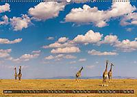 Auf Safari in Kenia 2019 (Wandkalender 2019 DIN A2 quer) - Produktdetailbild 5