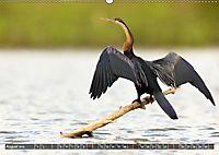 Auf Safari in Kenia 2019 (Wandkalender 2019 DIN A2 quer) - Produktdetailbild 8