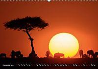 Auf Safari in Kenia 2019 (Wandkalender 2019 DIN A2 quer) - Produktdetailbild 12