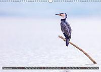 Auf Safari in Kenia 2019 (Wandkalender 2019 DIN A3 quer) - Produktdetailbild 2