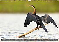 Auf Safari in Kenia 2019 (Wandkalender 2019 DIN A3 quer) - Produktdetailbild 8
