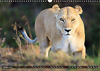 Auf Safari in Kenia 2019 (Wandkalender 2019 DIN A3 quer) - Produktdetailbild 10