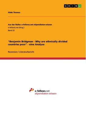 Aus der Reihe: e-fellows.net stipendiaten-wissen: Benjamin Bridgman - Why are ethnically divided countries poor - eine Analyse, Güde Thomas