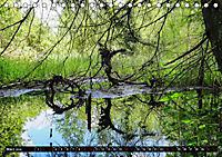 Ausflugsziele rund um Isny (Tischkalender 2019 DIN A5 quer) - Produktdetailbild 3