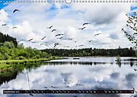 Ausflugsziele rund um Isny (Wandkalender 2019 DIN A3 quer) - Produktdetailbild 7