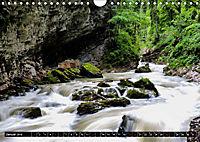 Ausflugsziele rund um Isny (Wandkalender 2019 DIN A4 quer) - Produktdetailbild 1