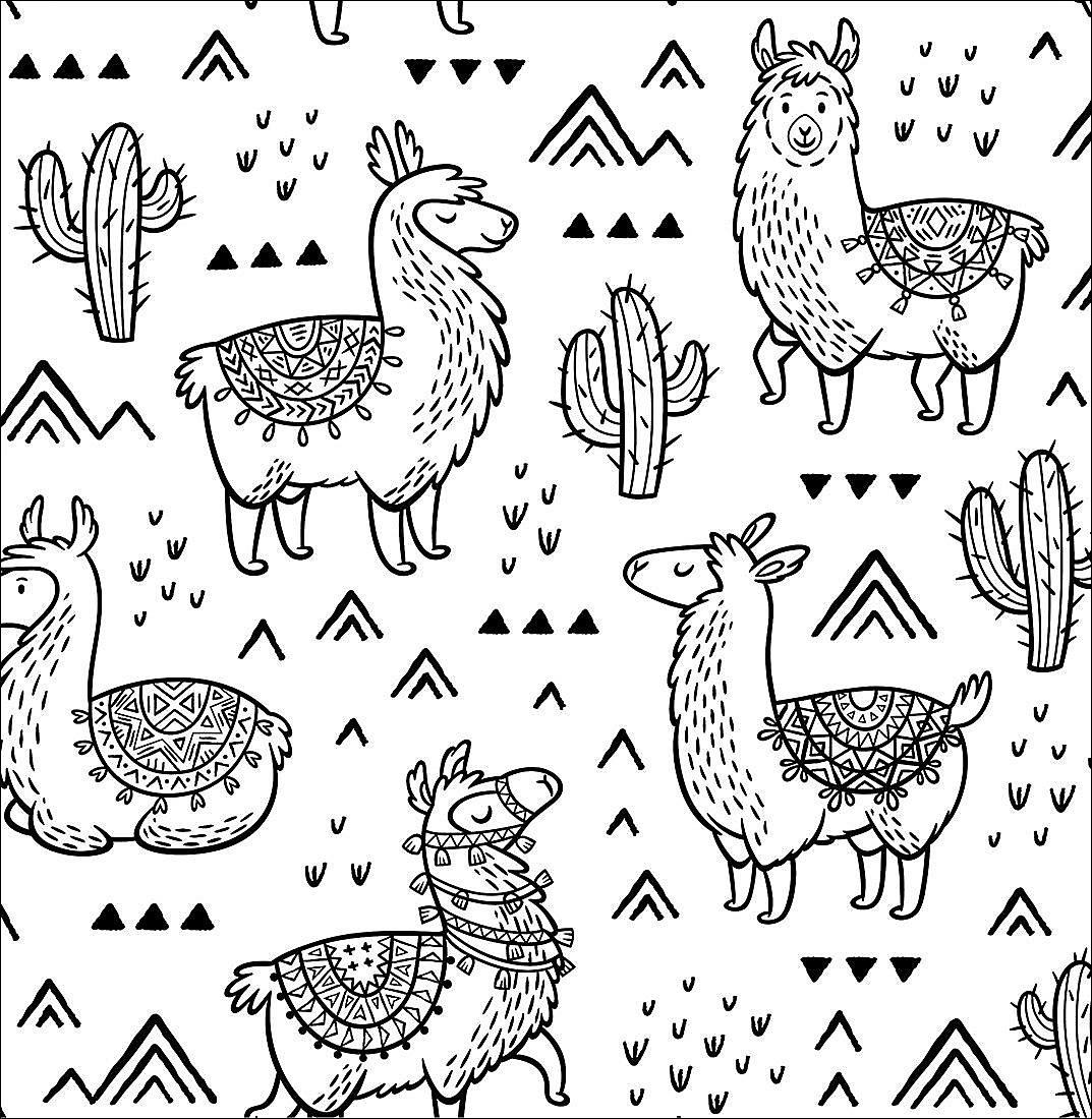ausmalbuch lama liebe buch jetzt bei weltbildde online
