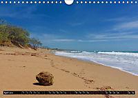 Australia's East Coast (Wall Calendar 2019 DIN A4 Landscape) - Produktdetailbild 4