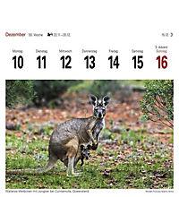 Australien 2018 - Produktdetailbild 10