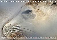 australisch - anders - wunderbar (Tischkalender 2019 DIN A5 quer) - Produktdetailbild 2