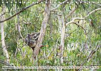 australisch - anders - wunderbar (Tischkalender 2019 DIN A5 quer) - Produktdetailbild 11
