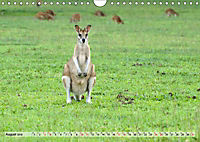 australisch - anders - wunderbar (Wandkalender 2019 DIN A4 quer) - Produktdetailbild 8