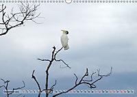 australisch - anders - wunderbar (Wandkalender 2019 DIN A3 quer) - Produktdetailbild 12