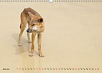 australisch - anders - wunderbar (Wandkalender 2019 DIN A3 quer) - Produktdetailbild 6