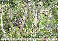 australisch - anders - wunderbar (Wandkalender 2019 DIN A3 quer) - Produktdetailbild 11