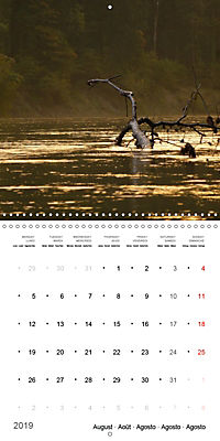 Austrian jewel - The Bregenzerach (Wall Calendar 2019 300 × 300 mm Square) - Produktdetailbild 8