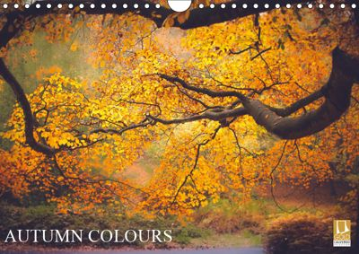 Autumn Colours (Wall Calendar 2019 DIN A4 Landscape), Kevin Mcguinness