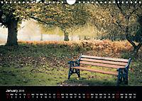 Autumn Colours (Wall Calendar 2019 DIN A4 Landscape) - Produktdetailbild 1