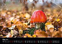 Autumn Colours (Wall Calendar 2019 DIN A4 Landscape) - Produktdetailbild 5
