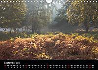 Autumn Colours (Wall Calendar 2019 DIN A4 Landscape) - Produktdetailbild 9