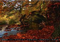 Autumn Trails (Wall Calendar 2019 DIN A3 Landscape) - Produktdetailbild 2