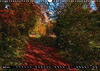 Autumn Trails (Wall Calendar 2019 DIN A3 Landscape) - Produktdetailbild 4
